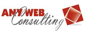 ANYWEB CONSULTING SRL – Web Agency Pisa Internet Provider